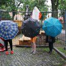 Regenschirme1